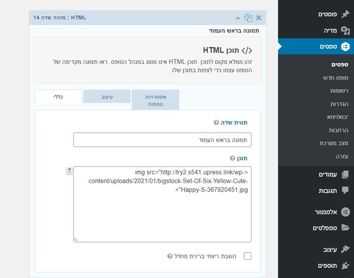 צילום מסך -שדה HTML